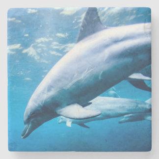 Dolphins Underwater Stone Coaster