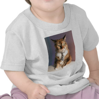 Domestic cat in a business Tie Tshirts