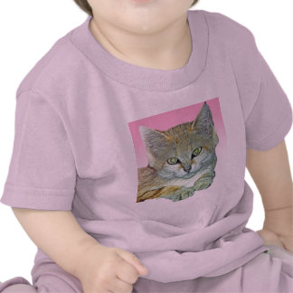 Domestic Cat Pink Background Shirt