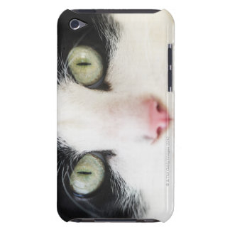 Domestic cat portrait Case-Mate iPod touch case