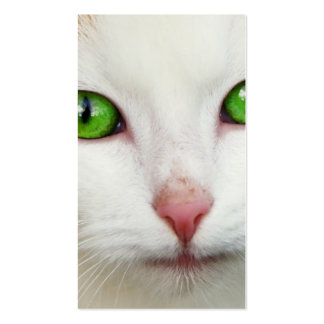 Domestic Cat with Green Eyes Feline Face White Fur Business Cards