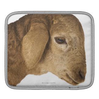Domestic lamb iPad sleeve