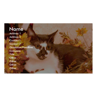 Domestic Short Haired Black And White Cat Perched Business Card Templates