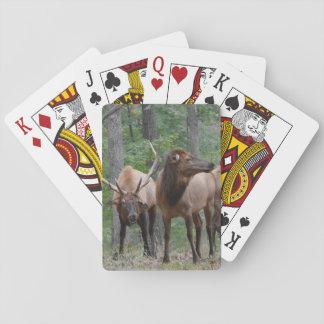Dominate Bull Elk In Rut Smiling Playing Cards