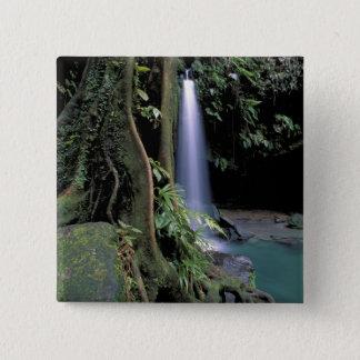 Dominica, Emerald Pool, Waterfall. 15 Cm Square Badge