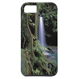Dominica, Emerald Pool, Waterfall. Case For The iPhone 5