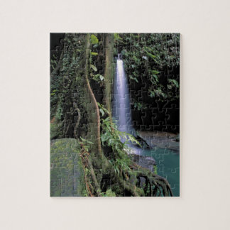 Dominica, Emerald Pool, Waterfall. Jigsaw Puzzle