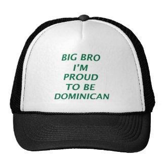 Dominican design trucker hat