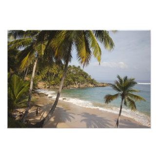 Dominican Republic, North Coast, Abreu, Playa 3 Photographic Print