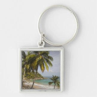 Dominican Republic, North Coast, Abreu, Playa Key Ring