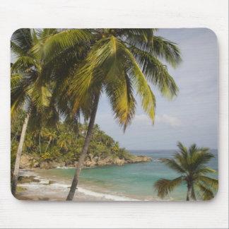 Dominican Republic, North Coast, Abreu, Playa Mouse Mat