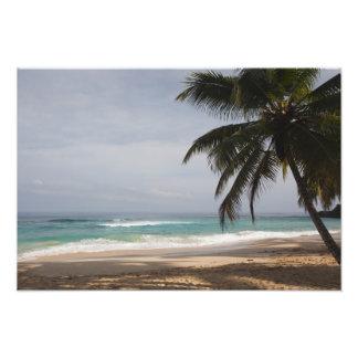 Dominican Republic, North Coast, Abreu, Playa Photo Print