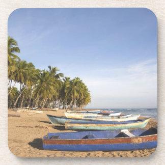 Dominican Republic, North Coast, Nagua, Playa Coaster