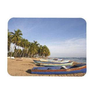 Dominican Republic, North Coast, Nagua, Playa Rectangular Photo Magnet