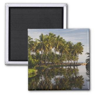 Dominican Republic, North Coast, Nagua, Playa Square Magnet