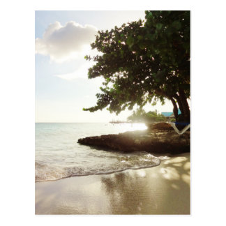Dominican Republic Punta Canta Beach Postcard