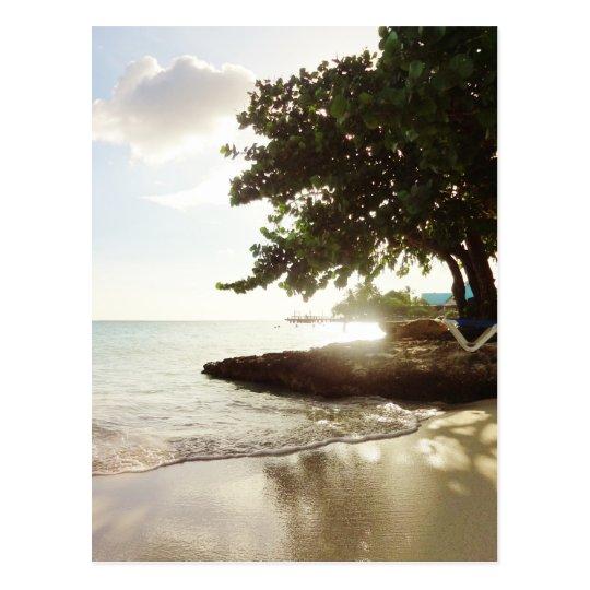 Dominican Republic Punta Canta Beach Postcard