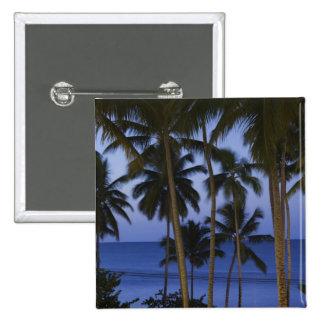 Dominican Republic, Samana Peninsula, Las 15 Cm Square Badge