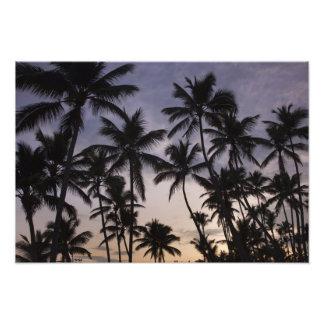 Dominican Republic Samana Peninsula Las 2 Photographic Print