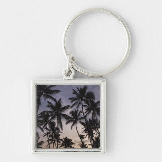 Dominican Republic, Samana Peninsula, Las 2 Silver-Colored Square Key Ring
