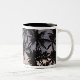 Dominican Republic, Samana Peninsula, Las 2 Two-Tone Coffee Mug