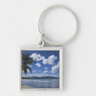 Dominican Republic, Samana Peninsula, Las 4 Silver-Colored Square Key Ring