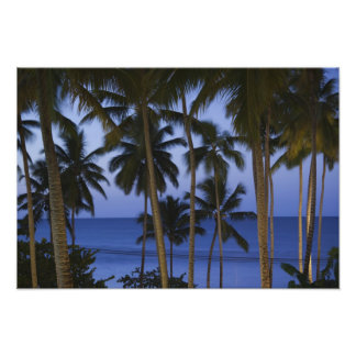 Dominican Republic, Samana Peninsula, Las Photo Print