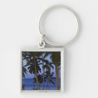 Dominican Republic, Samana Peninsula, Las Silver-Colored Square Key Ring