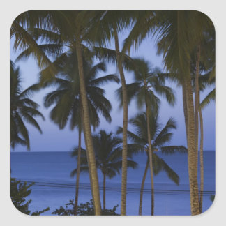 Dominican Republic, Samana Peninsula, Las Square Sticker