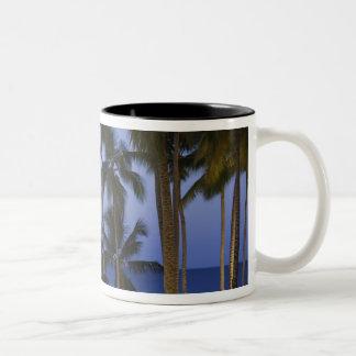 Dominican Republic, Samana Peninsula, Las Two-Tone Coffee Mug