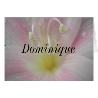 Dominique Greeting Cards