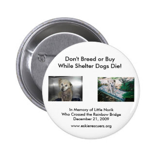 Don t Breed or Buy Pinback Button