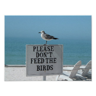 Don t Feed the Birds Posters