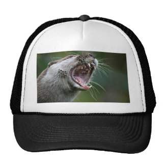 Don`t Mess With The Otter Trucker Hat