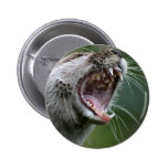 Don`t Mess With The Otter Pinback Button