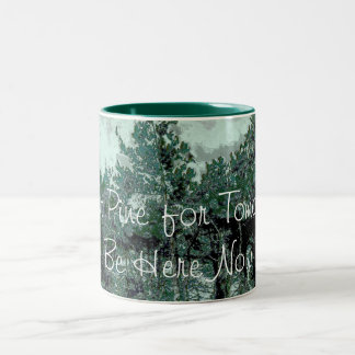 Don t Pine for Tomorrow Mug - Be Here Now