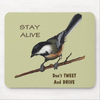 Don t Tweet Drive Bird Color Pencil Art Mousepads