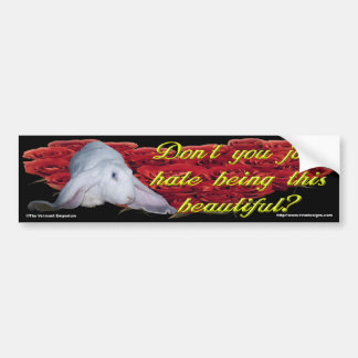 Don't You Just Hate Being This Beautiful? Bumper Sticker