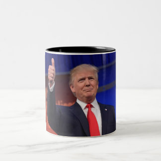 Donald Trump Election 2016 Mug
