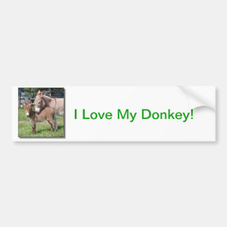 Donkey and Baby Bumper Sticker