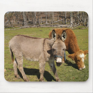 Donkey And Cow Mouse Pad