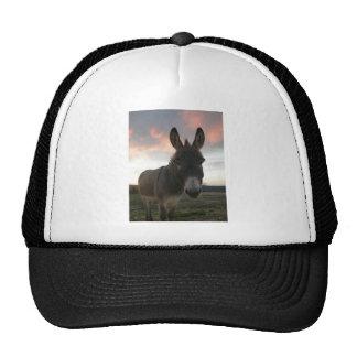 Donkey Art Cap
