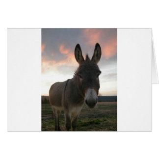 Donkey Art Card