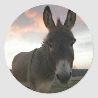 Donkey Art Round Sticker