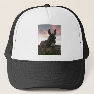 Donkey Art Trucker Hat