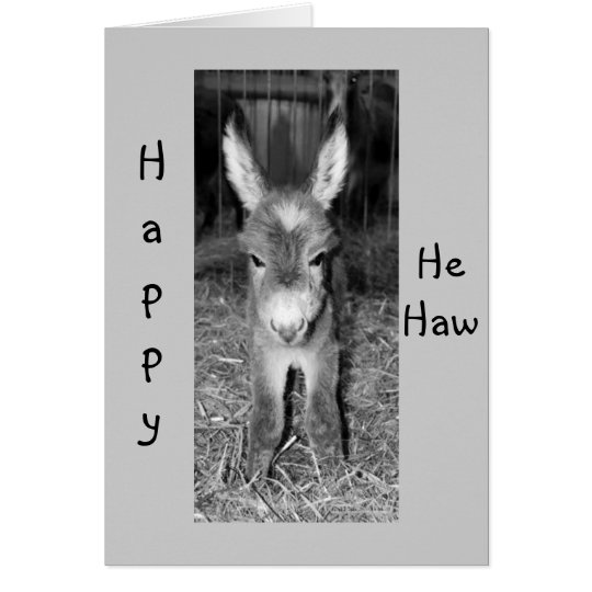 "DONKEY BABY SAYS HAPPY ""HE HAW"" BIRTHDAY TO"