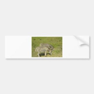 donkey car bumper sticker