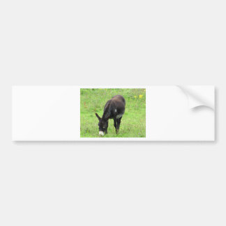 Donkey Bumper Sticker