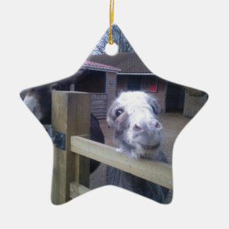 Donkey Christmas Ornament