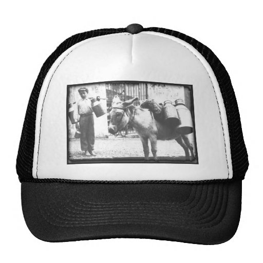 Donkey Delivery Trucker Hats